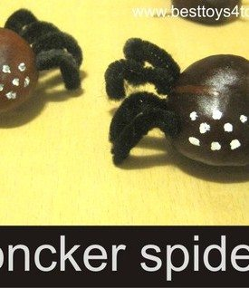 Concker Spiders Craft
