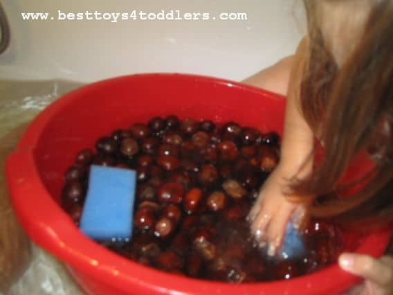 chestnut soup activity for toddlers besttoys4toddlers.com