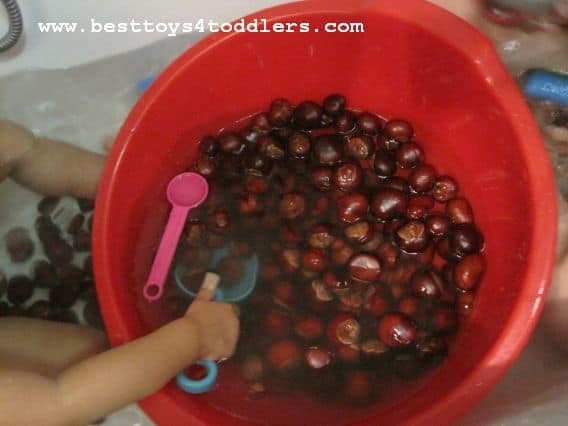 fall sensory activity with chestnuts besttoys4toddlers.com