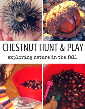 Autumn Chestnut Hunt and Sensory Play