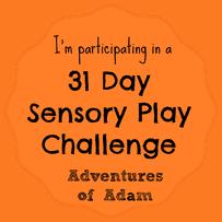 #31DaySensoryPlayChallenge January 2015
