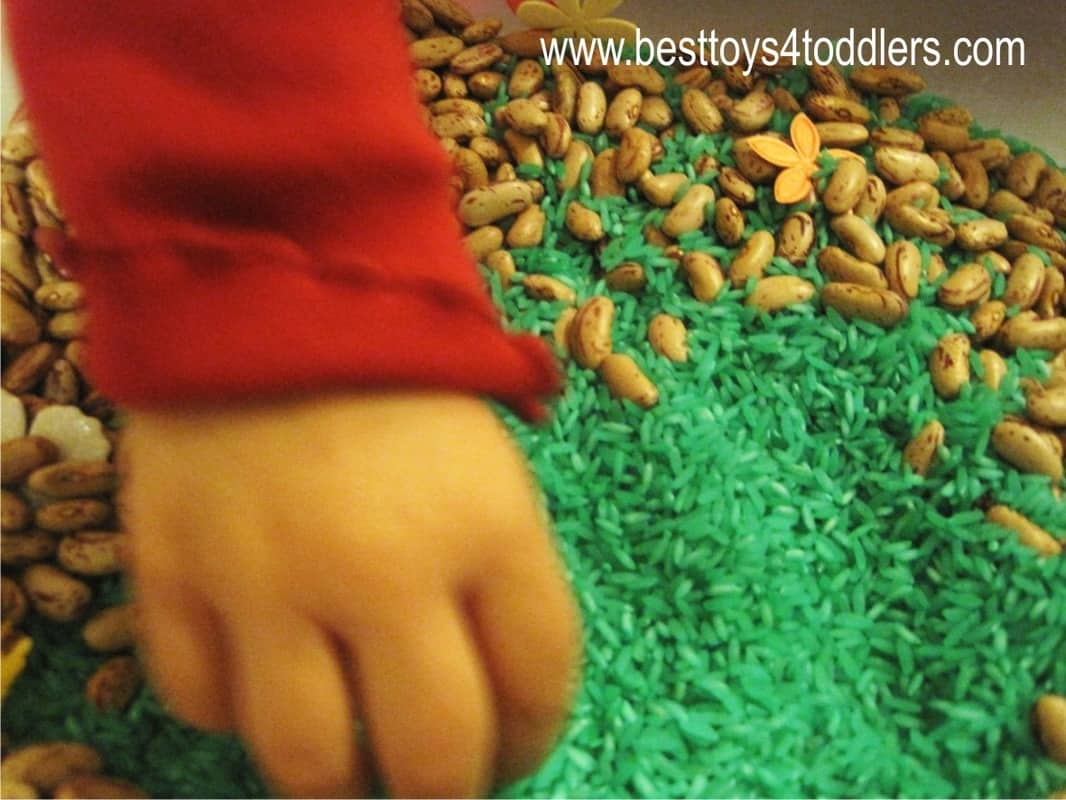 Expecting Spring Sensory Bin - playing with rice and beans with a toddler