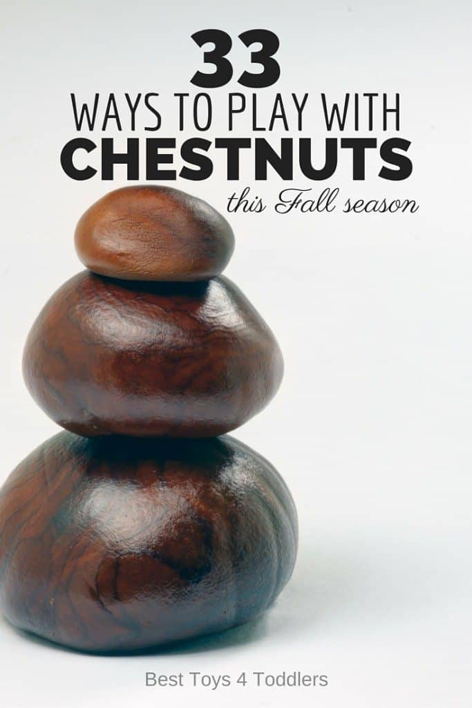 33 Ways to Play with Chestnuts this Fall season