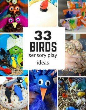 33 Bird Sensory Play Ideas for Kids