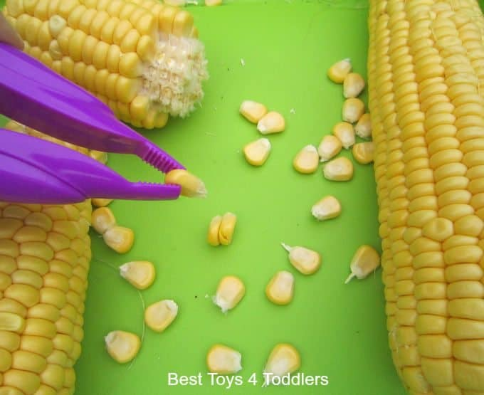 Fine motor skills corn on the cob