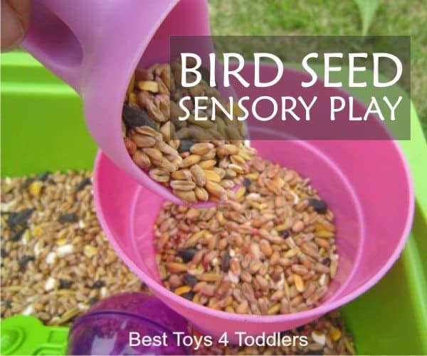 Bird seed sensory play is a simple activity you can enjoy this fall with toddlers and older kids