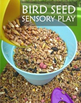 Simple to set up and fun to play outside - bird seed sensory bin for toddlers and preschoolers.