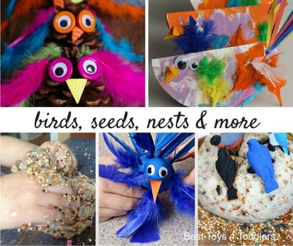 33 bird unit ideas for sensory play to have learn in fun and engaging hands-on way.