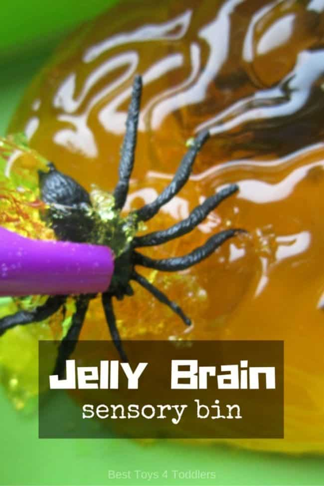 Amazingly gross for mamas and fun for kids!!! Jelly brains sensory bin to pick up inside a brain!