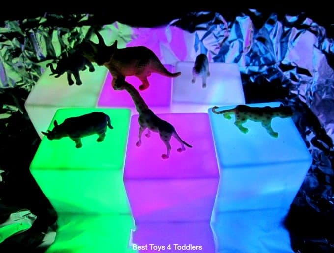 plastic animals and light play