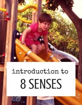Introduction to the Eight Senses