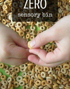 Zero Sensory Bin