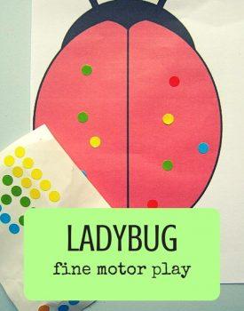 Ladybug Fine Motor Play