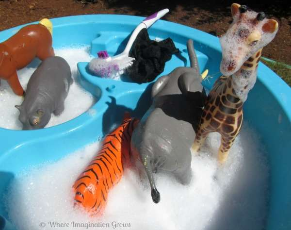animal-washing-sensory-bin