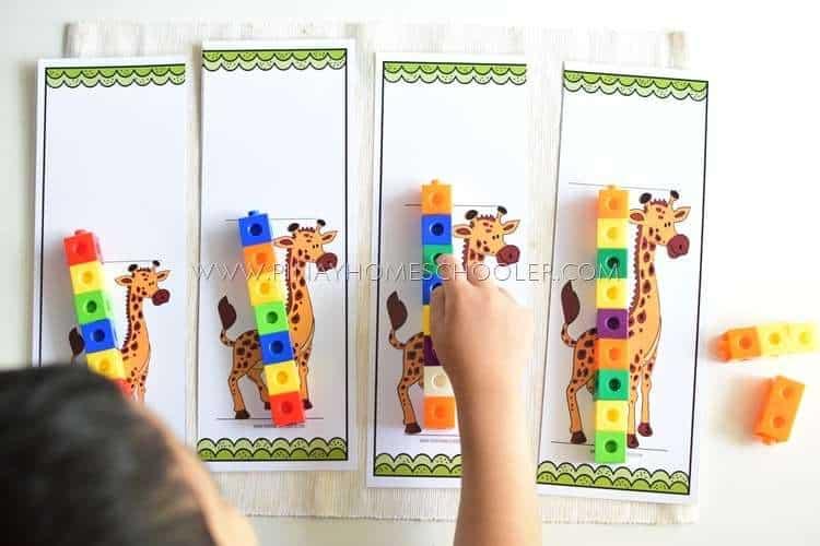 giraffe measuring activity
