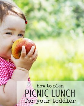 How to Plan a Picnic Lunch for Your Toddler