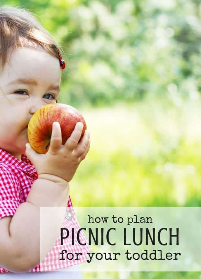 Best Toys 4 Toddlers - How to plan a picnic lunch with toddler