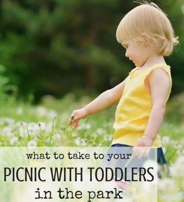 Best Toys 4 Toddlers - Picnic with toddlers ideas