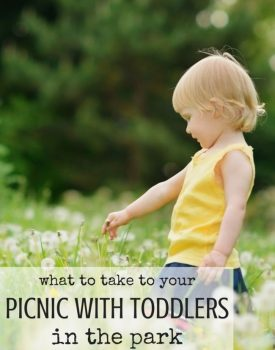 What to Take to Your Picnic with Toddlers in the Park