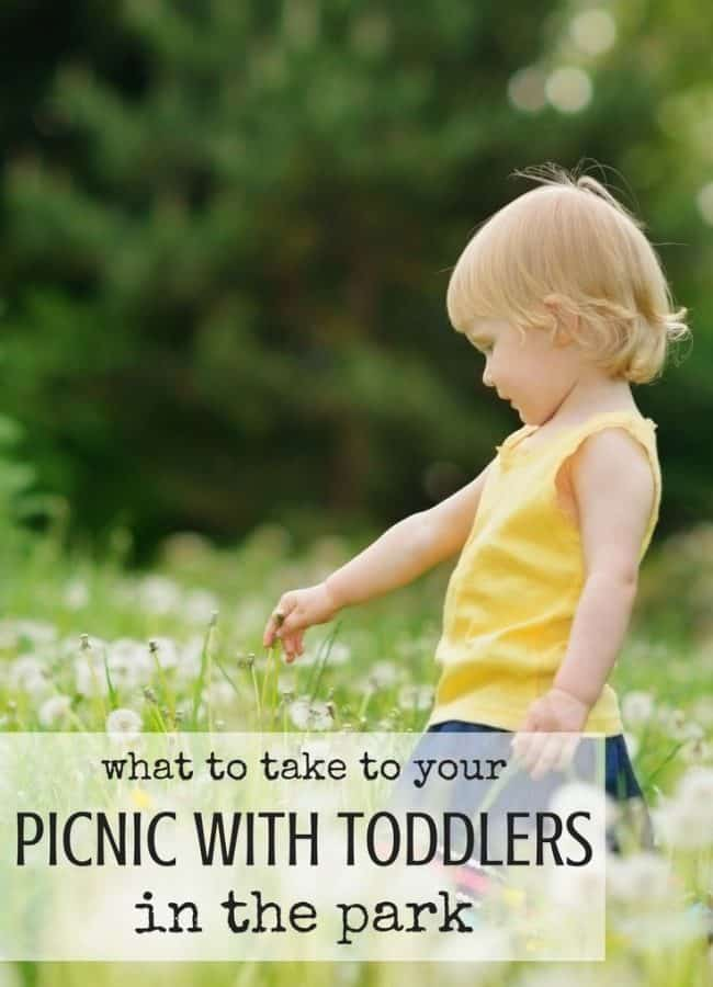 Best Toys 4 Toddlers - What to Take to Your Picnic with Toddlers in the Park (or playground, woods, beach!)