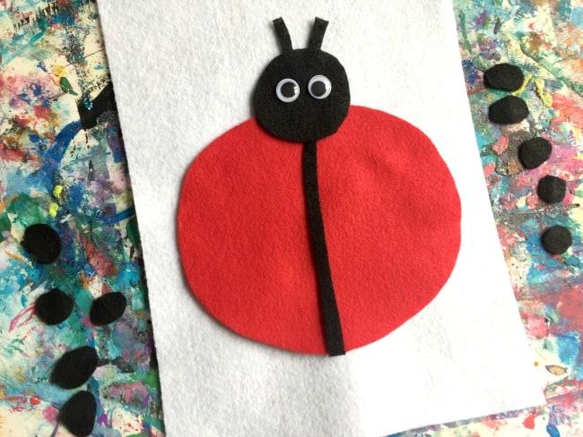 counting ladybug dots